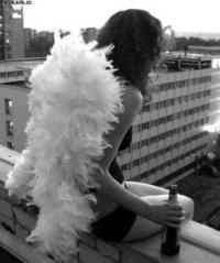 Алина Шорохова, 9 августа 1987, Ростов-на-Дону, id44598405